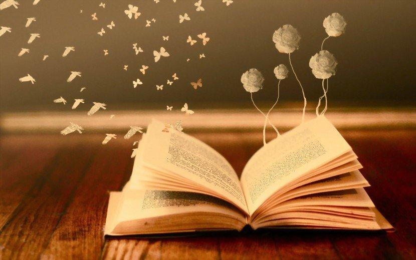 libro-de-segunda-mano-830×519